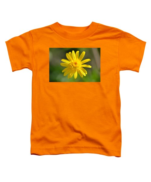Yellow Fireworks Toddler T-Shirt