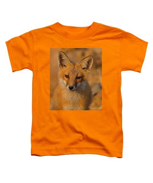 Young Fox Toddler T-Shirt