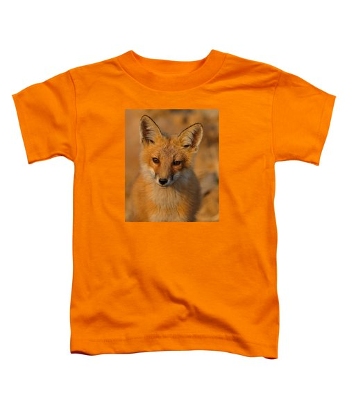 Young Fox Toddler T-Shirt