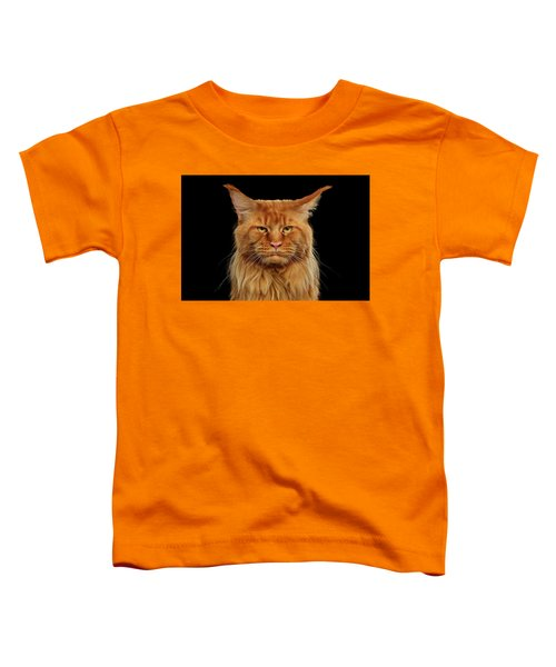 Angry Ginger Maine Coon Cat Gazing On Black Background Toddler T-Shirt