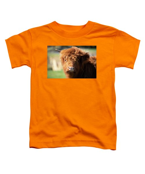 Highland Cow On The Farm Toddler T-Shirt