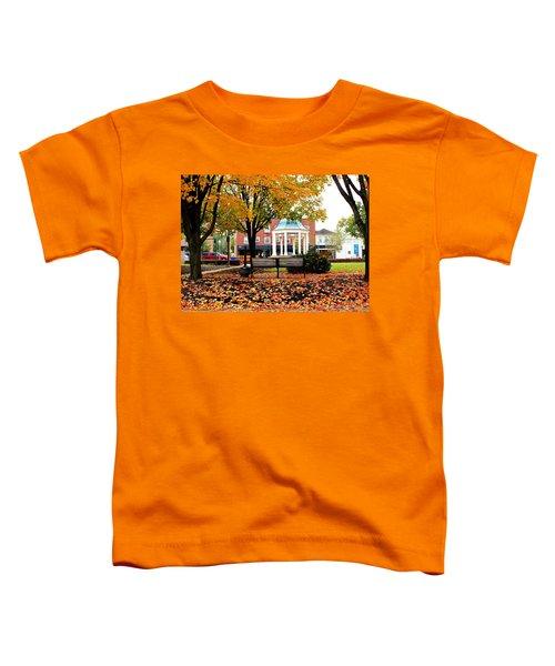 Autumn Gatherings  Toddler T-Shirt