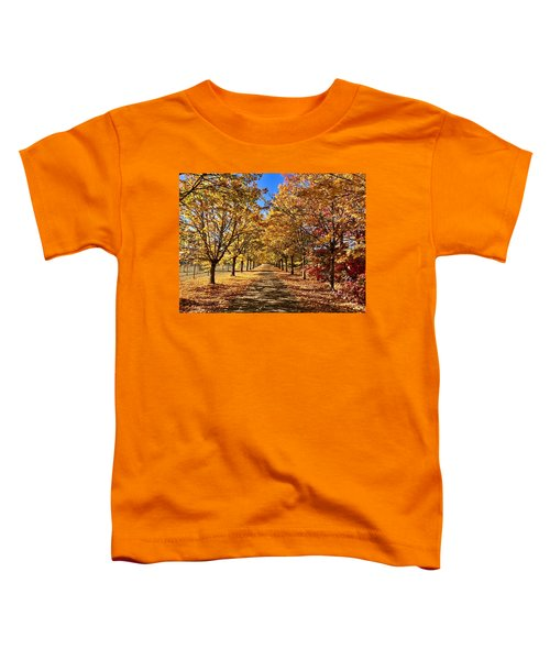 Autumn Road Toddler T-Shirt
