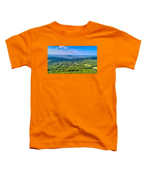 Binghamton Aerial View Toddler T-Shirt