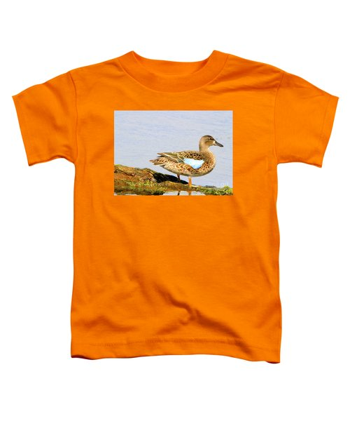 Blue-winged Teal Female Duck Toddler T-Shirt