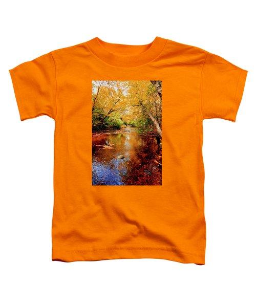 Boone Fork Stream Toddler T-Shirt