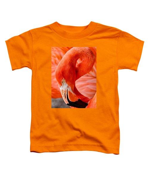 Caribbean Flamingo Toddler T-Shirt