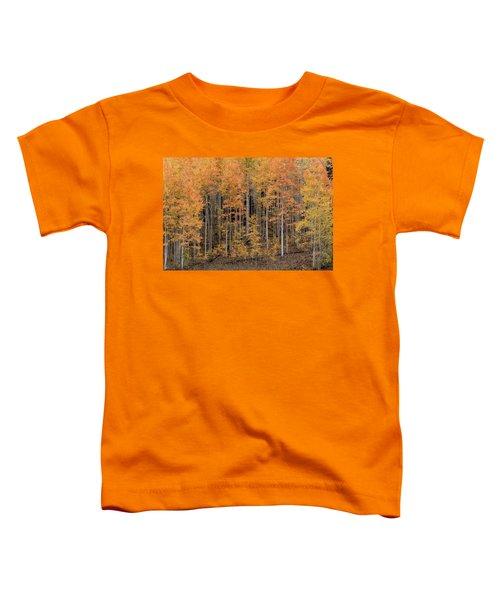 Colorado Guardians Toddler T-Shirt