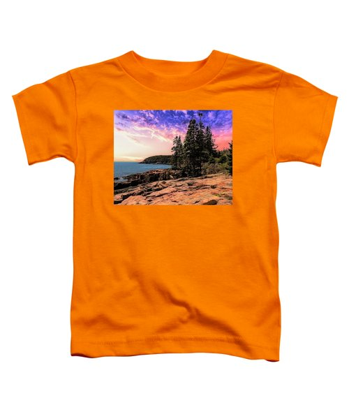 Distant View Of Otter Cliffs,acadia National Park,maine. Toddler T-Shirt