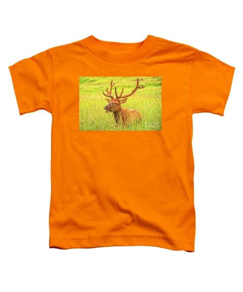 Elk Toddler T-Shirt