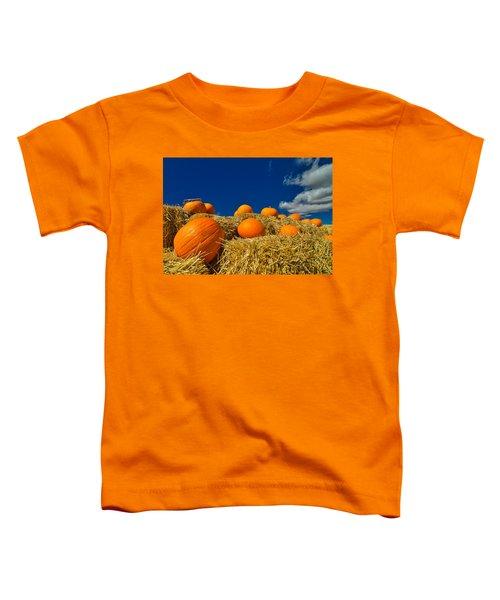 Fall Pumpkins Toddler T-Shirt