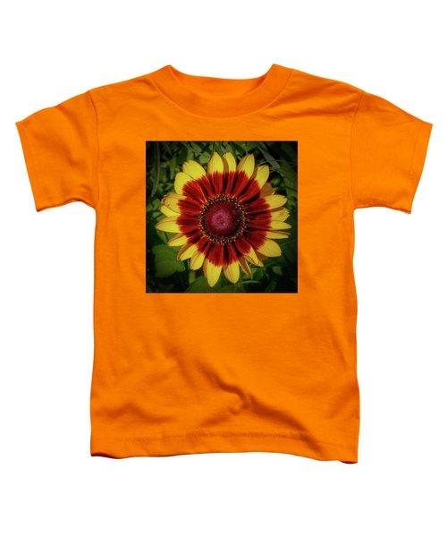 Firewheel Toddler T-Shirt