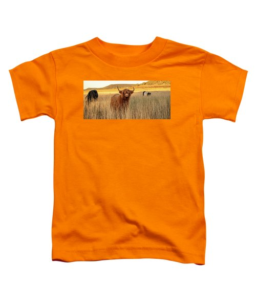 Highland Cows On The Farm Toddler T-Shirt