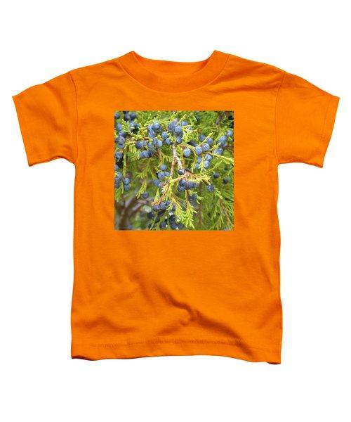 Juniper Berries Toddler T-Shirt
