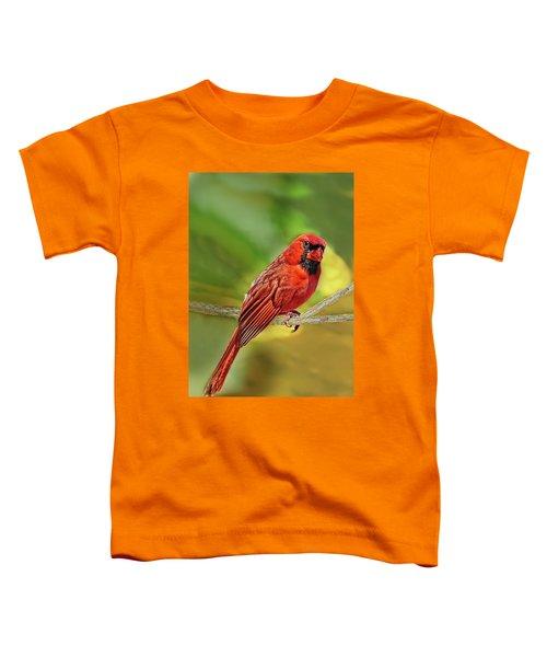 Male Cardinal Headshot  Toddler T-Shirt