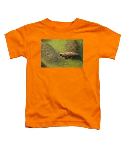 Manatees Toddler T-Shirt