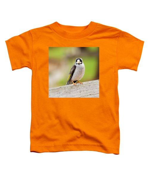 Noisy Miner Toddler T-Shirt