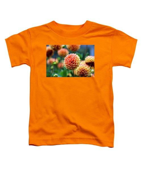 Peach Dahlias Toddler T-Shirt