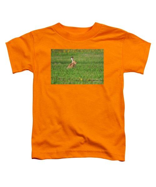 Rabbit Chews Toddler T-Shirt