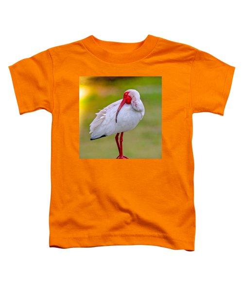 Sleepy Ibis Toddler T-Shirt
