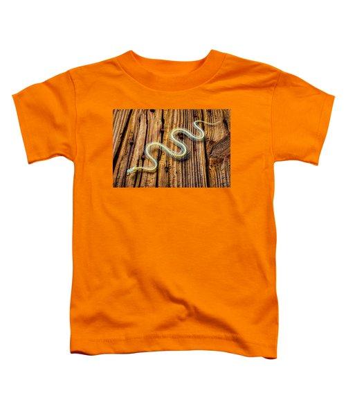 Snake Skeleton On Wooden Boards Toddler T-Shirt