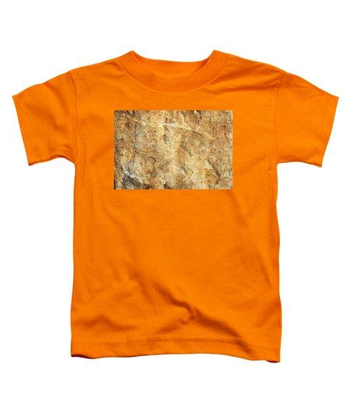 Sun Stone Toddler T-Shirt