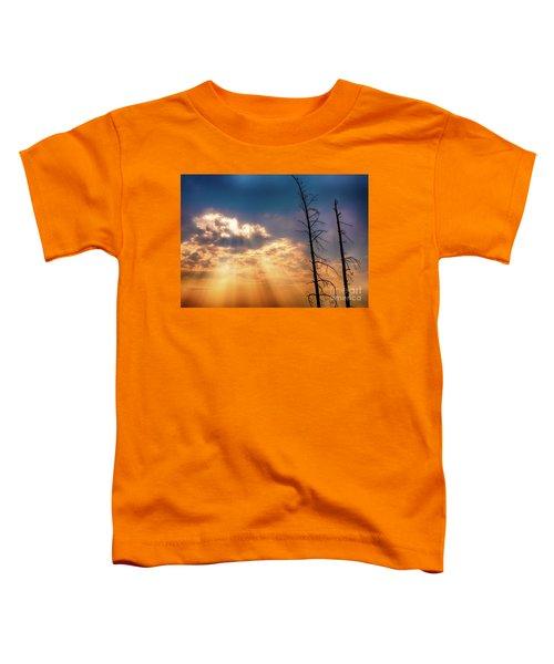 Sunbeams Toddler T-Shirt
