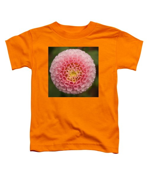 Symmetrical Dahlia Toddler T-Shirt