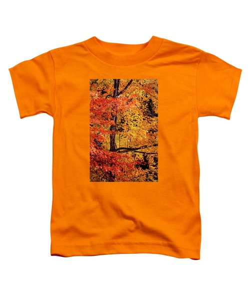 The Colors Of Fall Toddler T-Shirt
