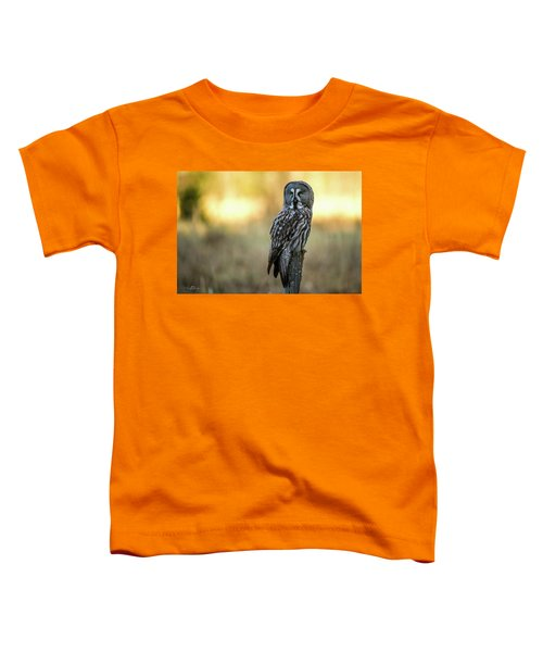 The Great Gray Owl In The Morning Toddler T-Shirt