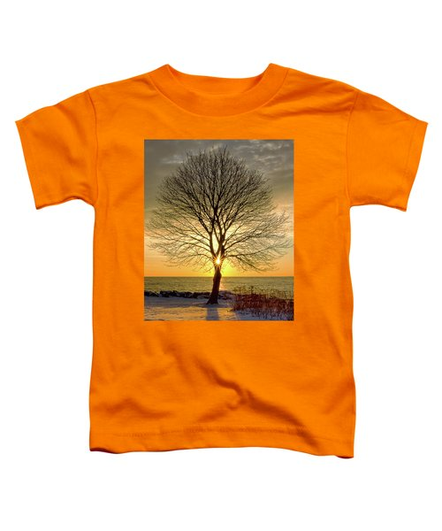 Tree Framed Sunrise New Hampshire Toddler T-Shirt