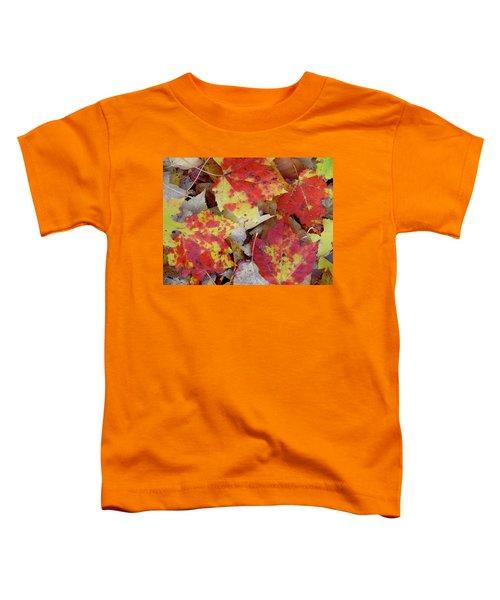 True Autumn Colors Toddler T-Shirt