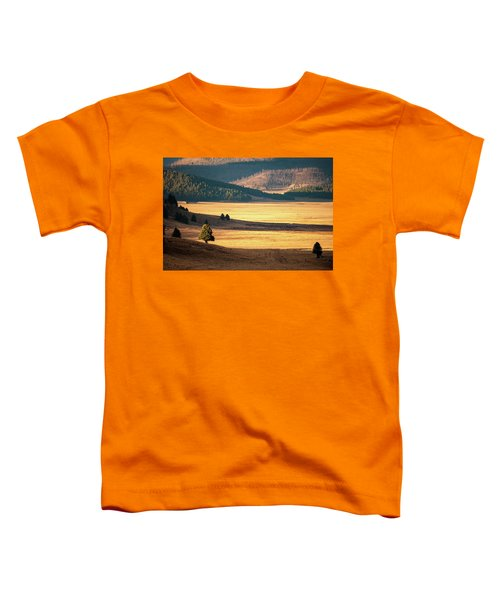 Valles Caldera Detail Toddler T-Shirt