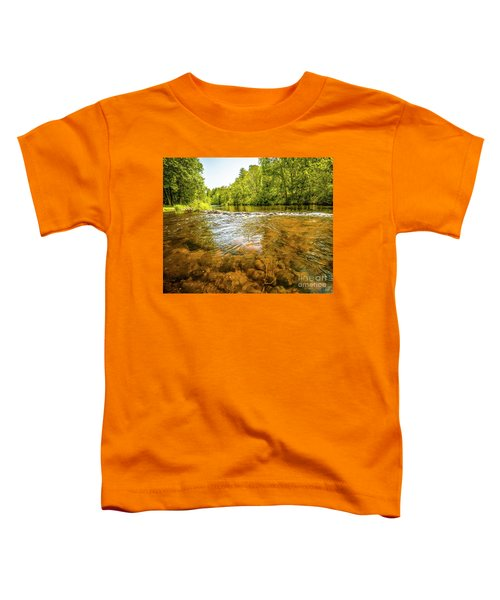 Vans Pool On The Farmington Toddler T-Shirt