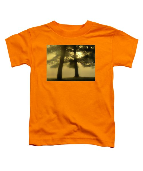 Waking From A Dream Toddler T-Shirt