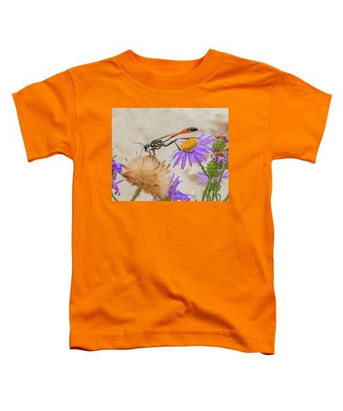 Wasp At White Sands Toddler T-Shirt