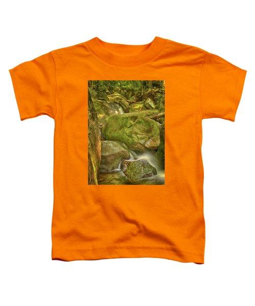 Wet Rocks Toddler T-Shirt