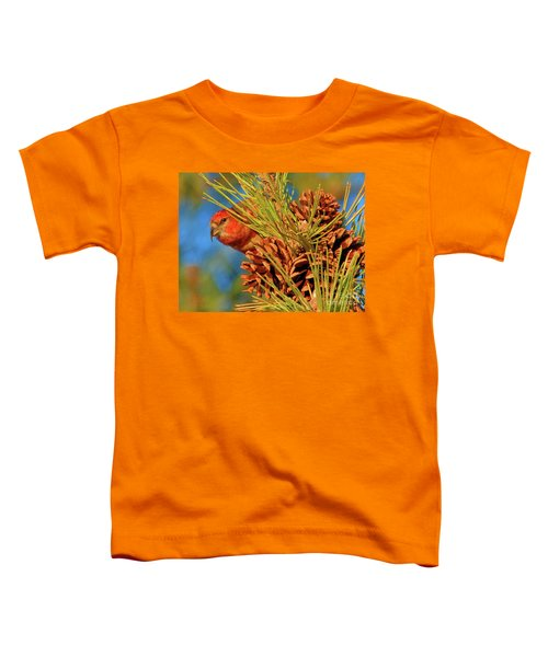 White-winged Crossbill Toddler T-Shirt