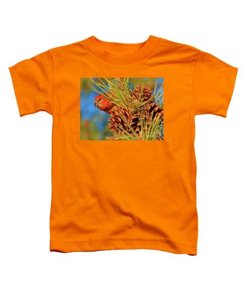 White-winged Crossbill Toddler T-Shirt