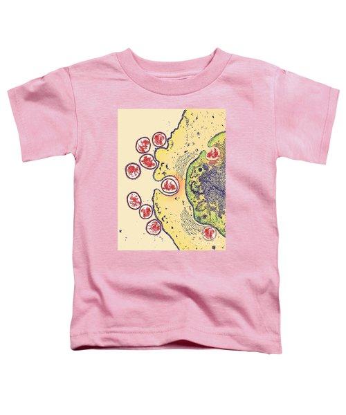 Avian Flu Toddler T-Shirt