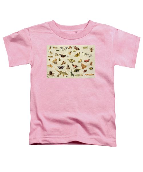 A Study Of Insects Toddler T-Shirt by Jan Van Kessel