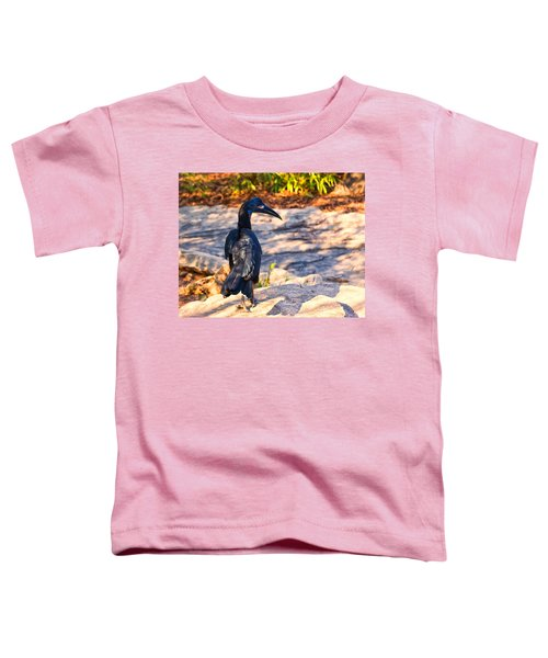 Abyssinian Ground Hornbill Toddler T-Shirt by Chris Flees