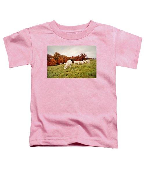 Autumn Pastures Toddler T-Shirt