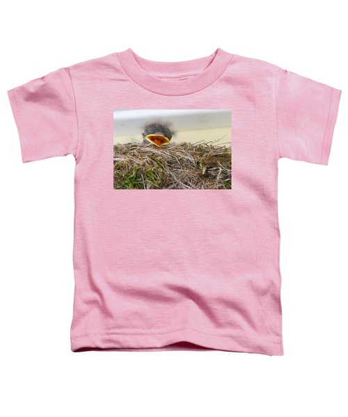 Baby Phoebe Toddler T-Shirt