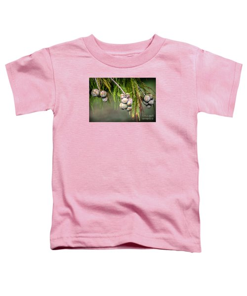 Bald Cypress Tree Seed Pods Toddler T-Shirt
