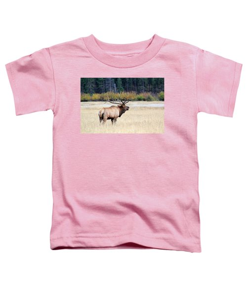 Big Colorado Bull Toddler T-Shirt
