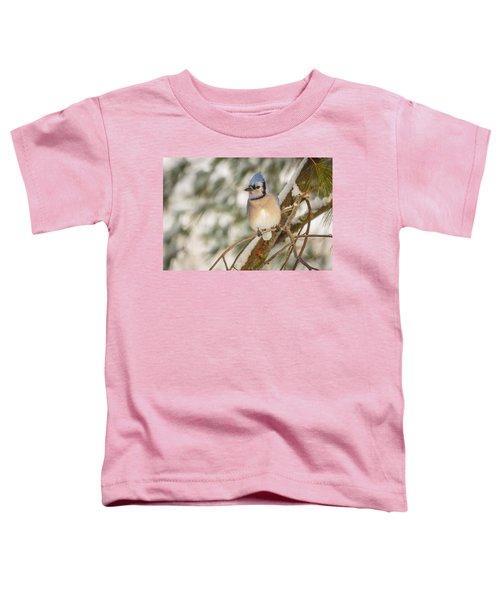 Blue Jay Toddler T-Shirt by Everet Regal