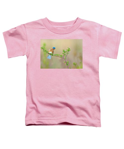 Bluebird Breeze Toddler T-Shirt