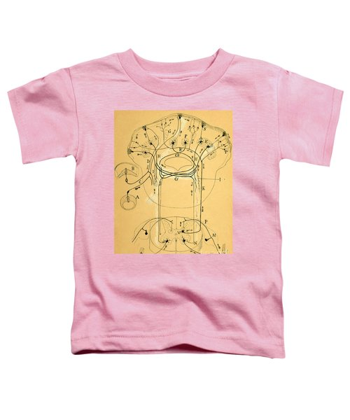 Brain Vestibular Sensor Connections By Cajal 1899 Toddler T-Shirt