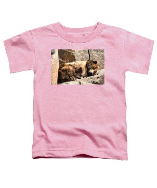 Brown Bear Asleep Again Toddler T-Shirt